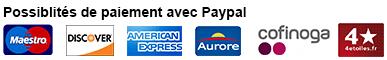 possibilités de paiements avec paypal